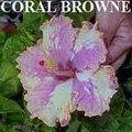 Coral_Browne.jpg