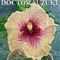 DoctorSuzuki.jpg